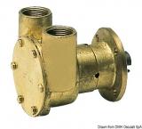 ImpellerPumpe NAUCO Modell FPR040, mit Flansch, wird direkt am Motor montiert