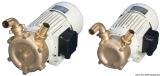 Professionelle selbstansaugende Bilgenpumpe aus Bronze Leistung 120l/min